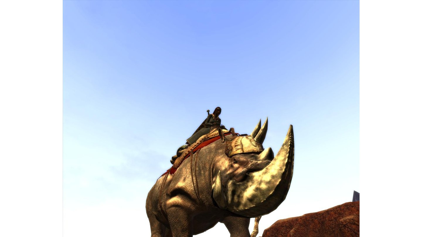 Age of Conan Mount_4