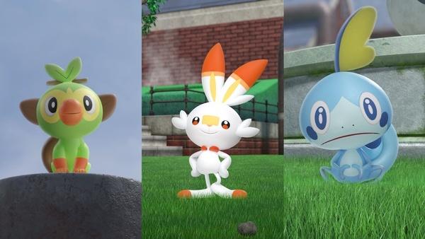 evoli entwickeln pokemon schild